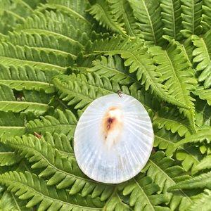 Jewelry - Hawaii Ooak opihi limpet shell pendant beach boho
